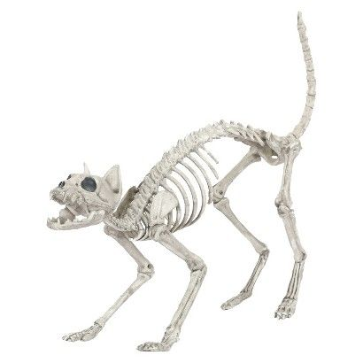 halloween cat skeleton dcor target