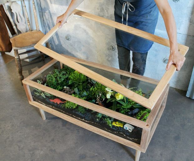 Table Indoor Garden in a coffee table - I'd love to try this with thyme, rosemary, etc. Would be cool to add earthworms!Indoor Garden in a coffee table - I'd love to try this with thyme, rosemary, etc. Would be cool to add earthworms!