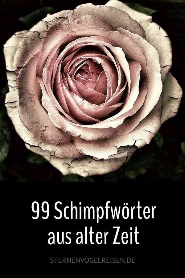 99 Hohepunkte Aus Dem Schimpfworterlexikon Von 1838 In 2020