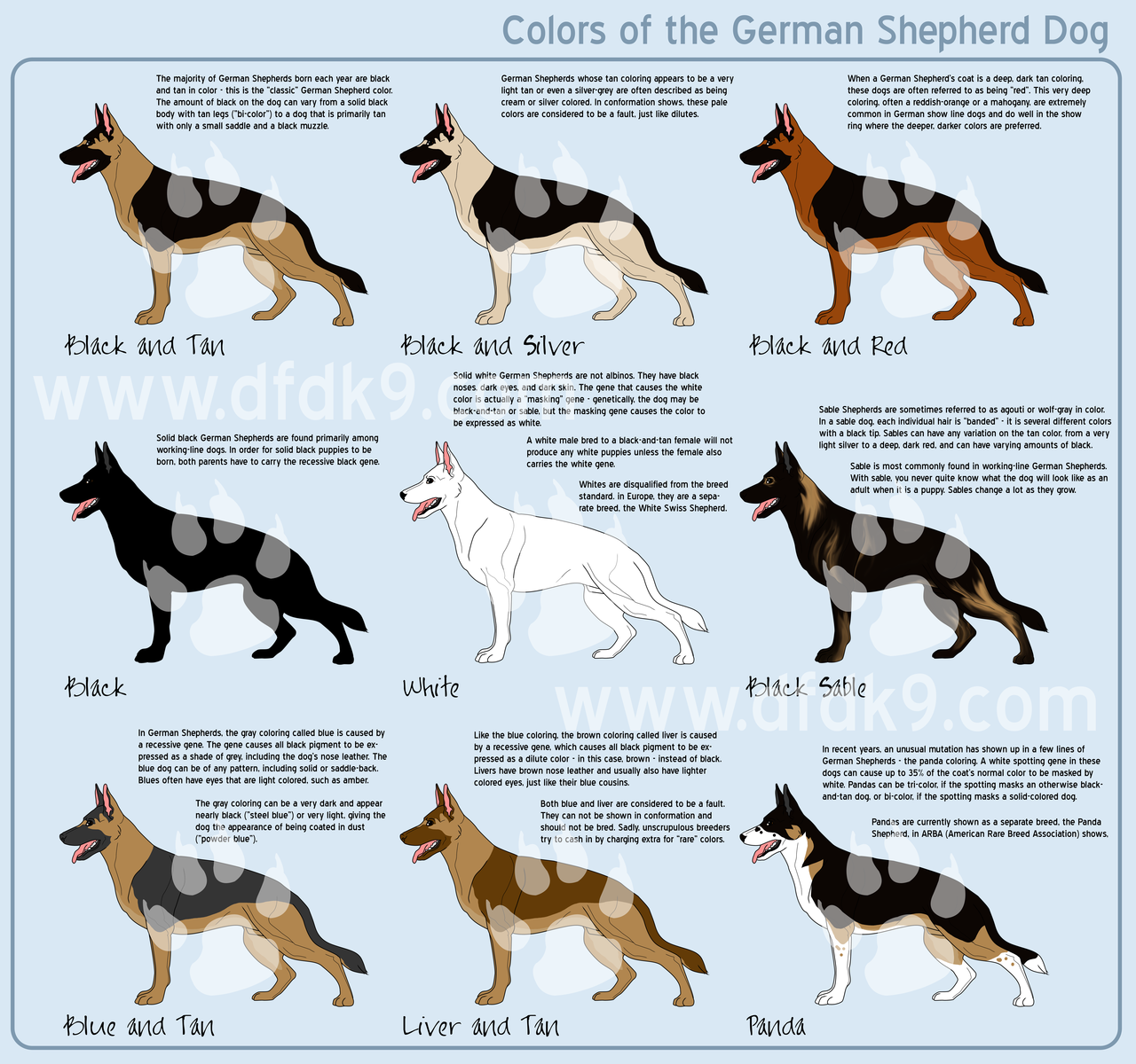 How neat i had no idea how many different color coats the gsd had i had no idea how many different color coats the gsd had educational hmm go figure i looked at the panda one and thought oh thats pinteres geenschuldenfo Images