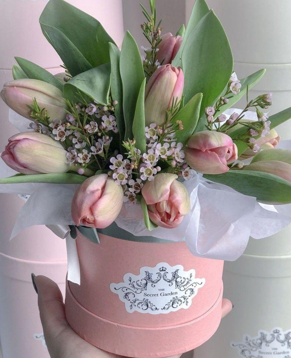 Pin de Olga Grabas em flowers tulips ♡ Tulipas, Flores