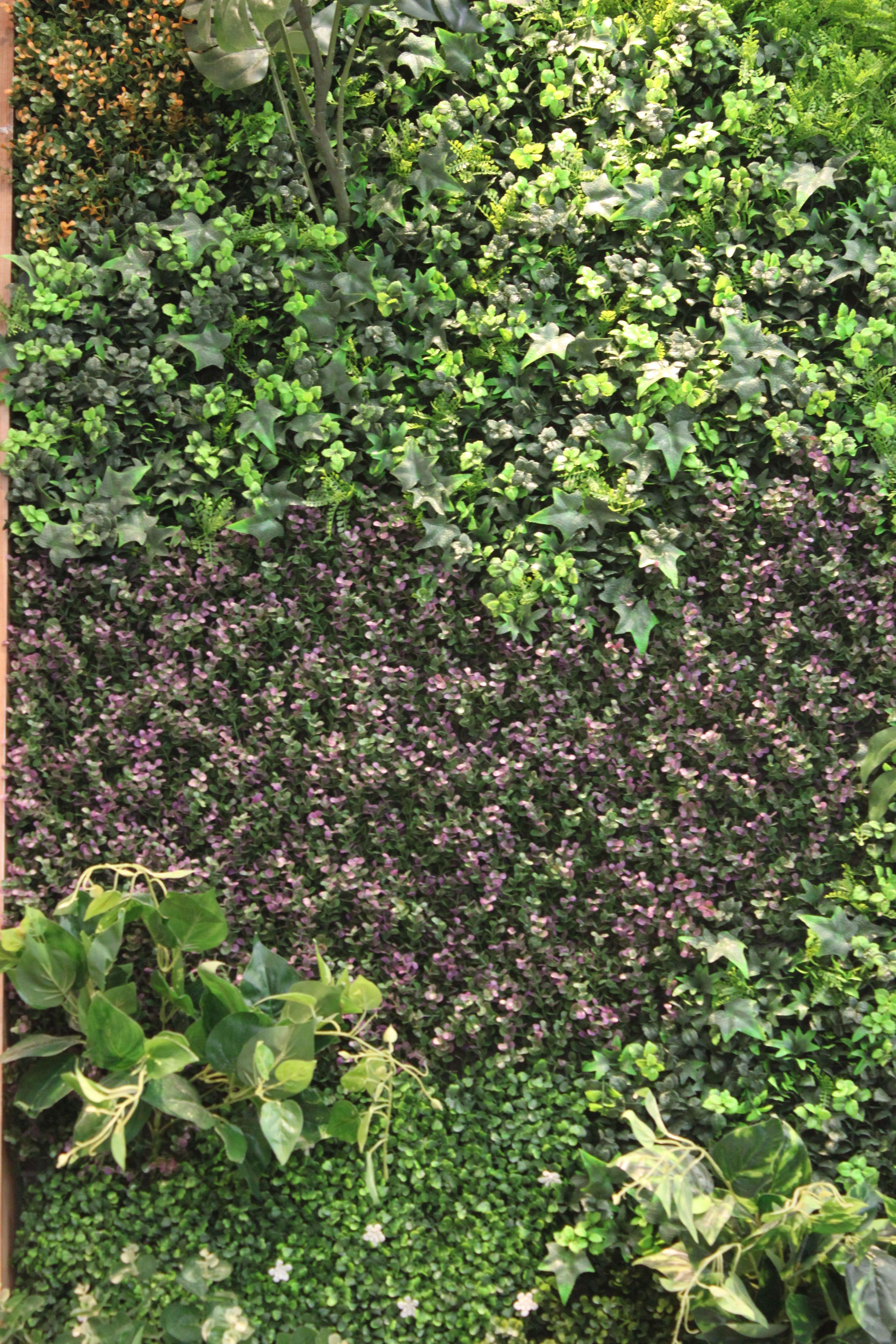 Muro verde exterior interior jardin muros verdes for Jardines verdes