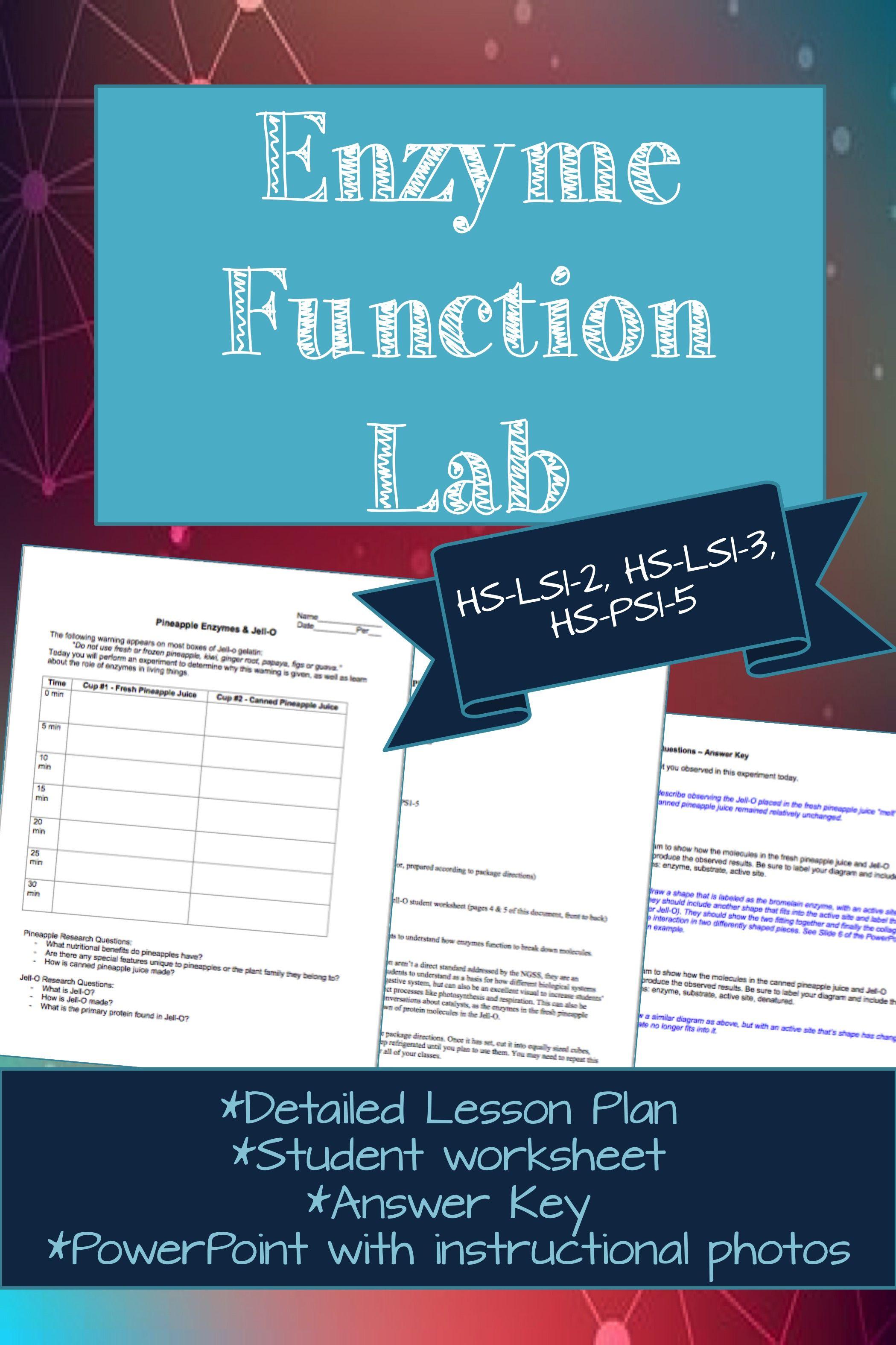 Simple Enzyme Function Lab Hs Ls1 2 Hs Ls1 3 Hs Ps1 5