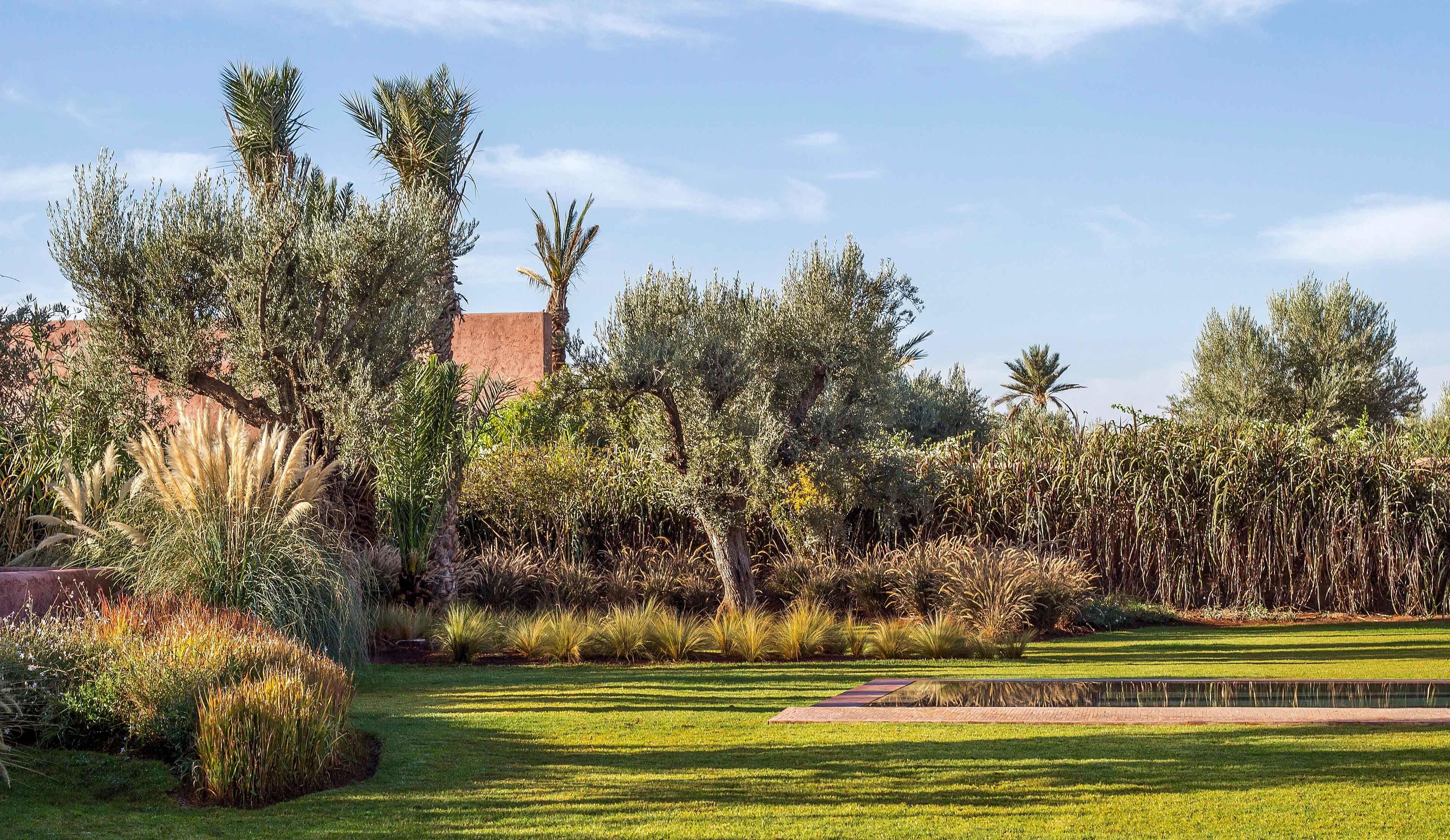 Epingle Par Atelier Klp Sur Kliphuis En 2020 Paysagiste Jardin Paysager Architecte Paysagiste
