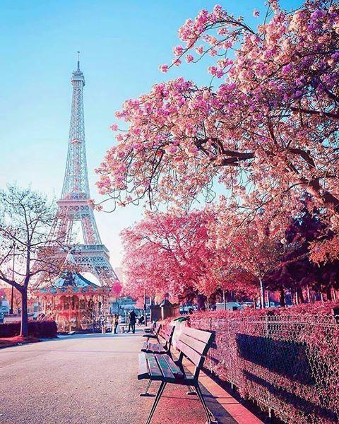 Spring Anime 2019 Hd: Eiffel Tower
