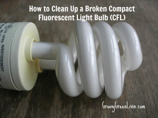 How To Clean Up A Broken Compact Fluorescent Light Bulb Cfl Fluorescent Light Bulb Bulb Flourescent Light Bulb