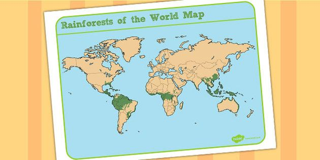 Jungles And Rainforests Of The World Map Jungle Journey
