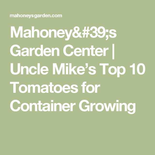 Mahoneyu0027s Garden Center | Uncle Mikeu0027s Top 10 Tomatoes For Container Growing