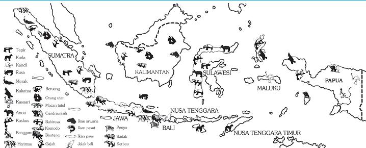 20++ Peta persebaran hewan indonesia terupdate