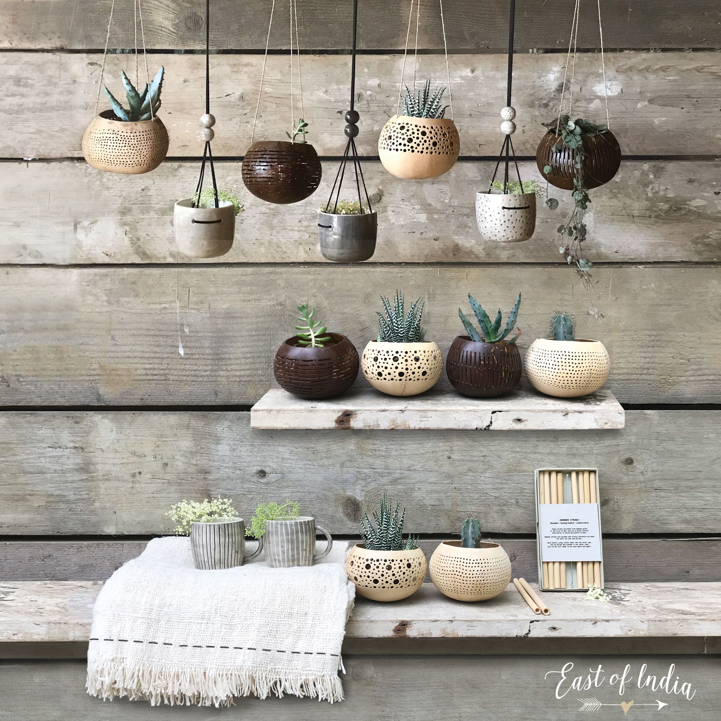 Pin by East of India on East of India Planter pots