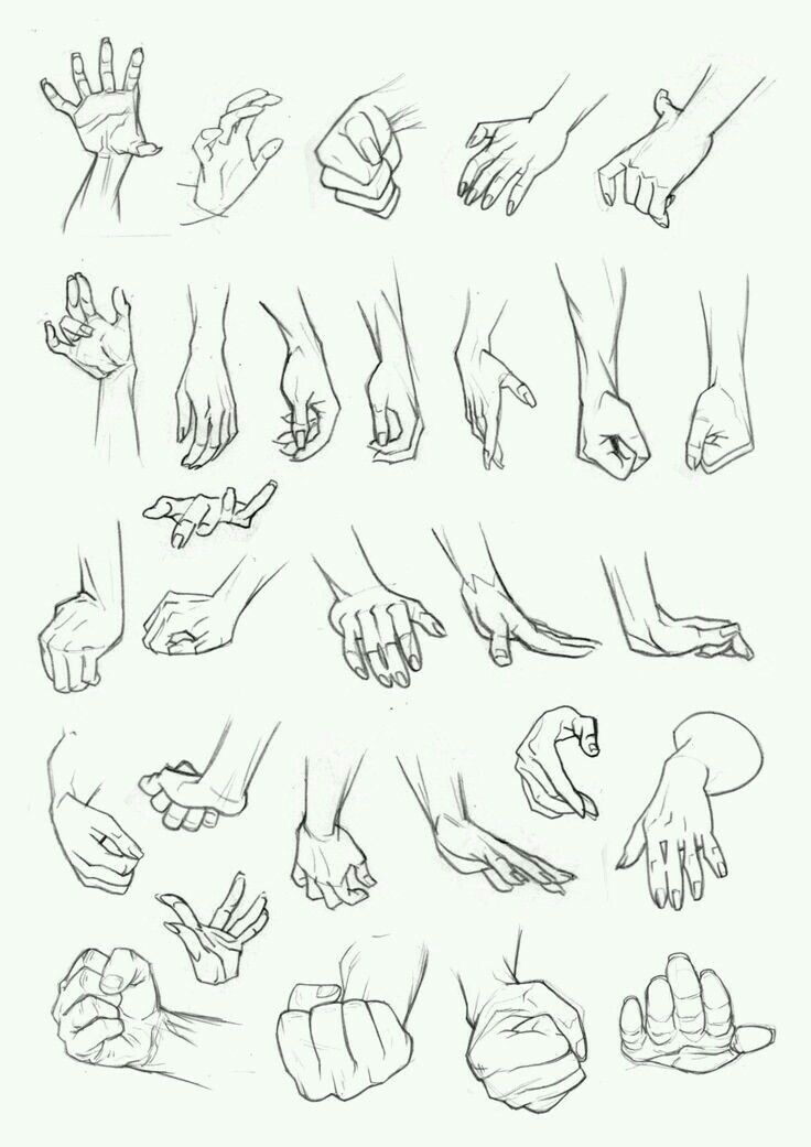 Hands animation pinterest drawings anatomy and drawing reference
