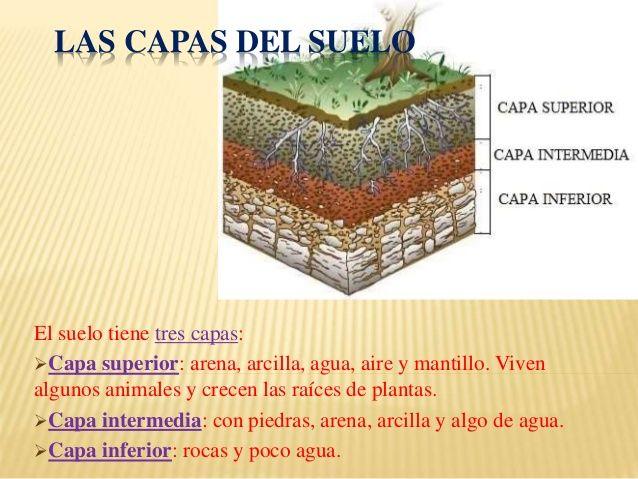 Capas de los suelos buscar con google tareas pinterest suelos capilla y biolog a - Suelos para ninos ...