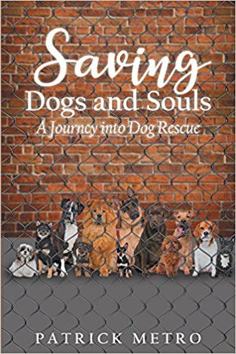 Understand the exhilarating stories behind dog rescue with Patrick