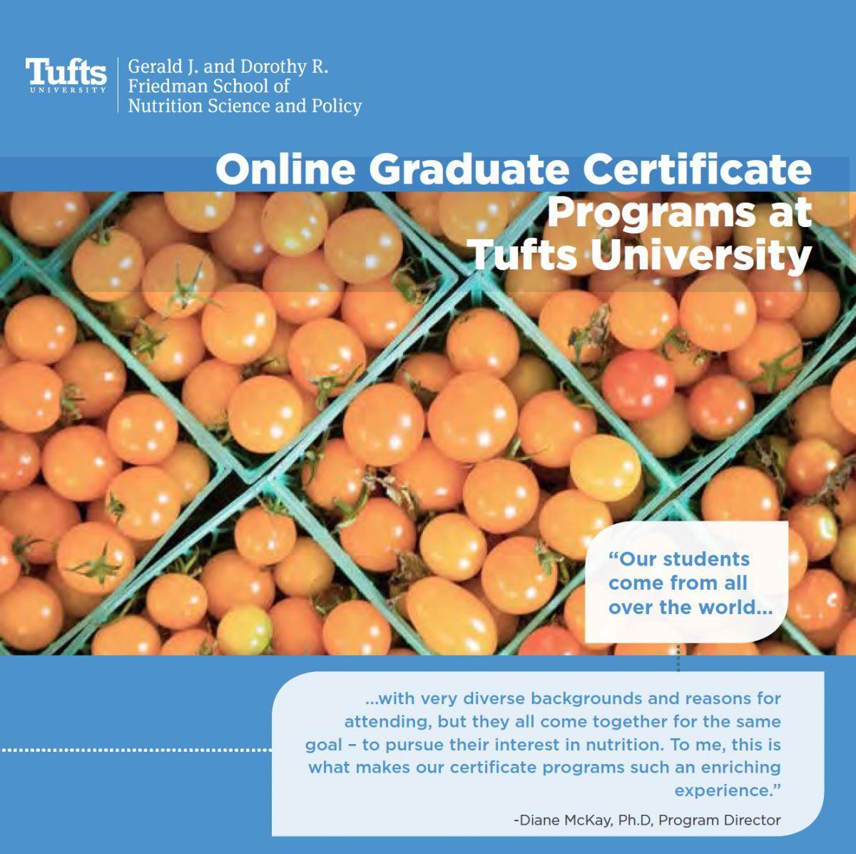Online Graduate Certificate Programs Nutrition Online Degree