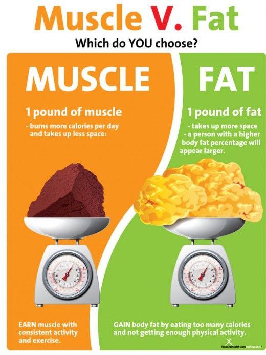 Royal marines 2 week diet plan photo 8