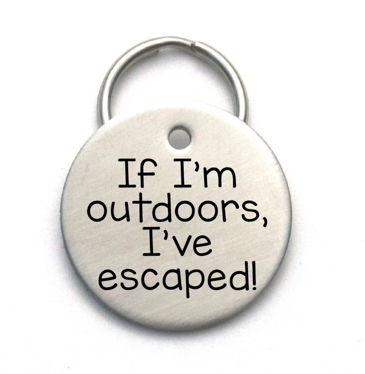 Engraved Stainless Steel Pet ID Tag