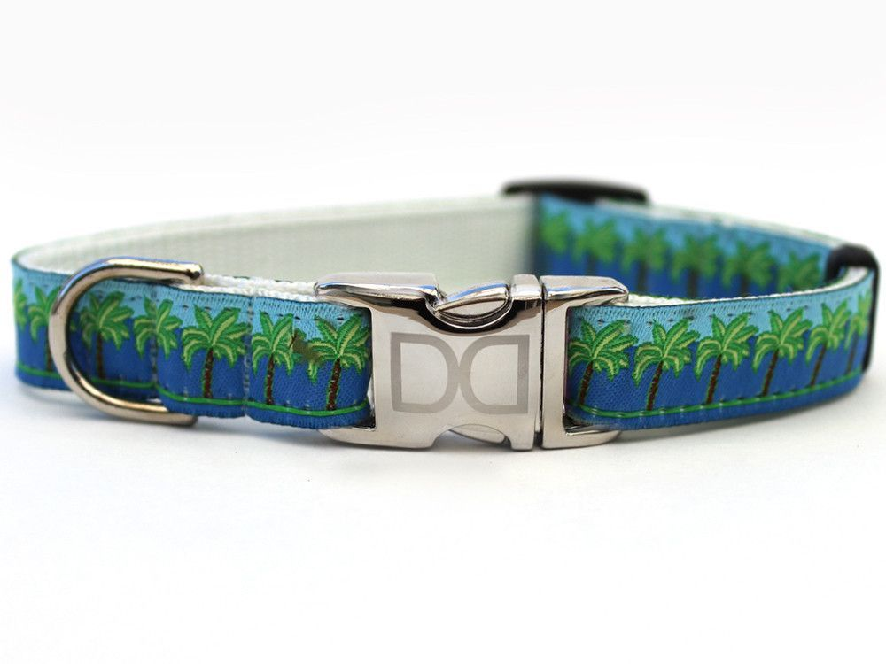 Designer Dog Collar - South Beach