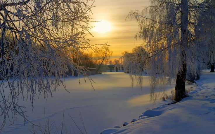 Sweden winter snow frost forest trees meadow morning sun sunrise rivers lakes sky clouds wallpaper background
