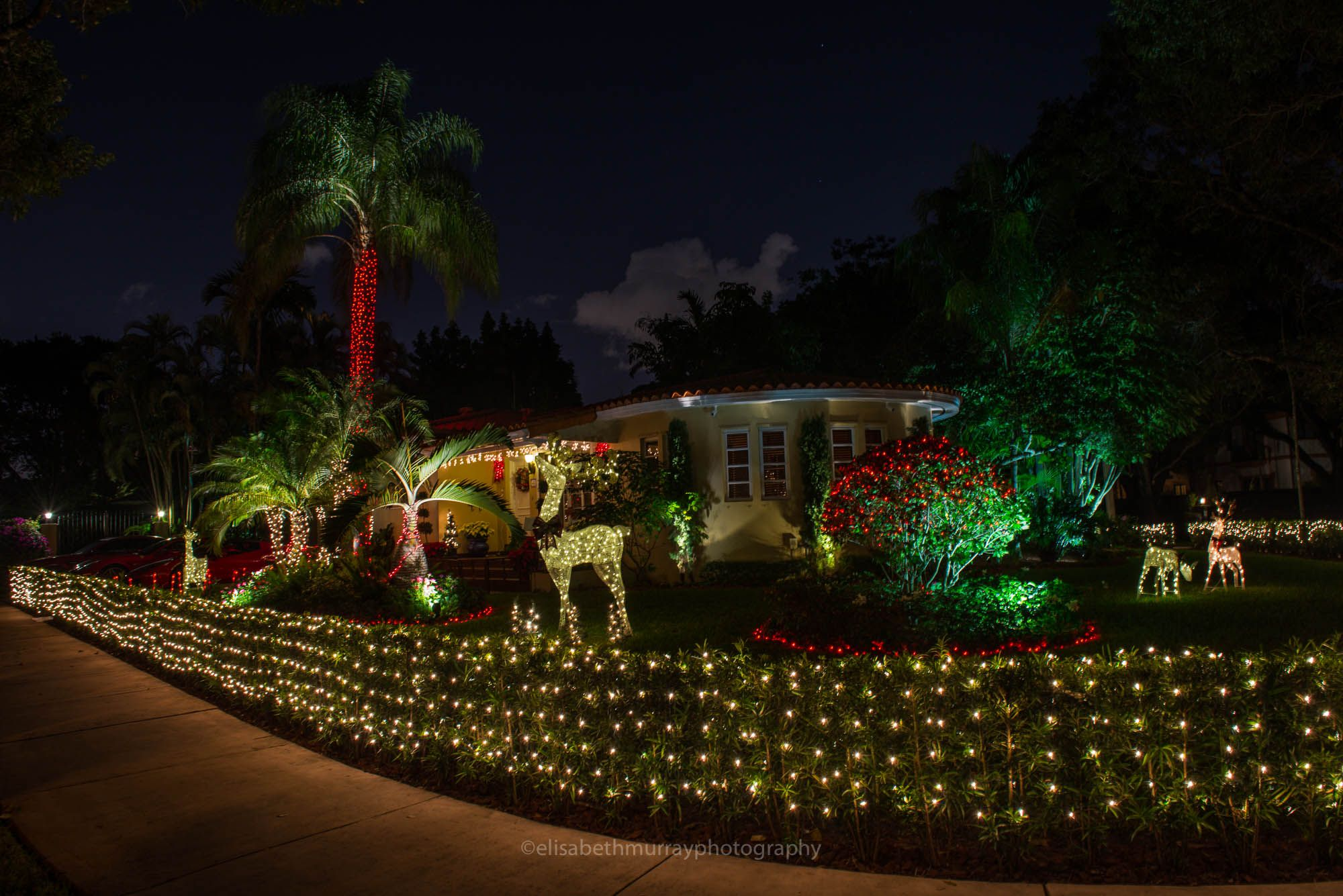 Coral Gables Garden City By Elisabeth Murray