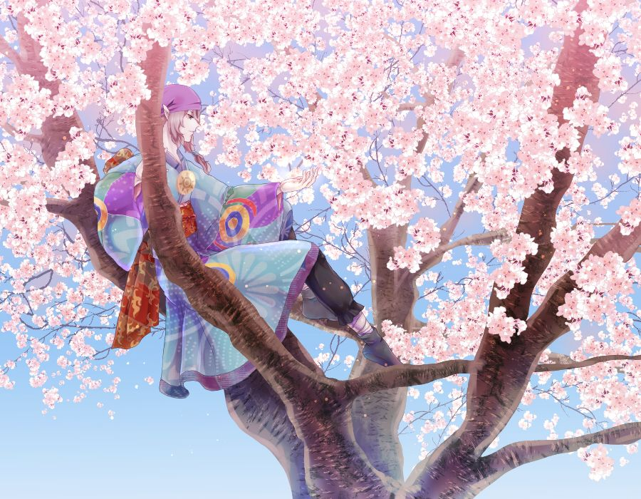 Kusuriuri 1538677 Anime King Anime Fantasy Anime Images