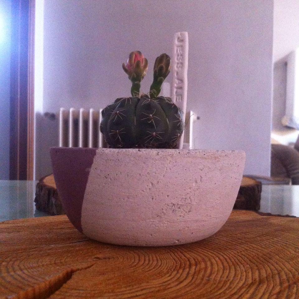 Concrete Vases a.j