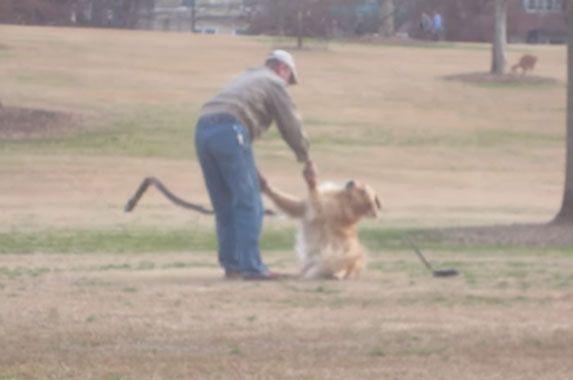 E ovo se zove razmaženost: Pogledajte kako se pas ponaša kad neće da krene kući iz parka! VIDEO