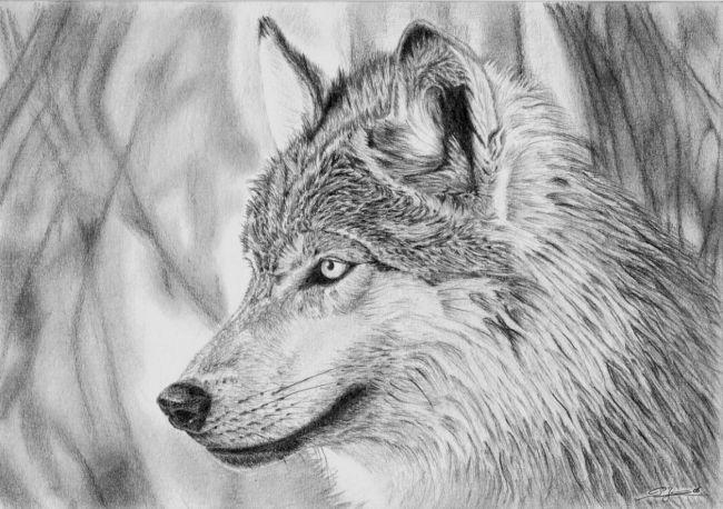 Dessin loup 1 wolf loup dessin loup g om trique et dessin profil - Profil dessin ...