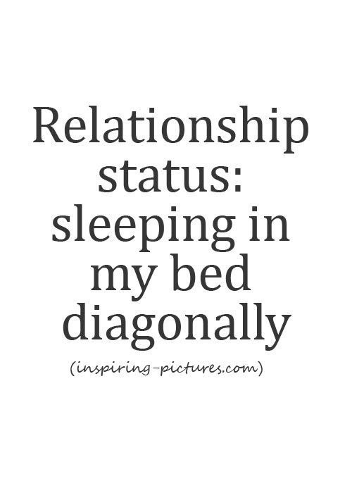 Single Life Quotes Not Entirely Truei Sleep Across When My Dog Allows It Qoutes