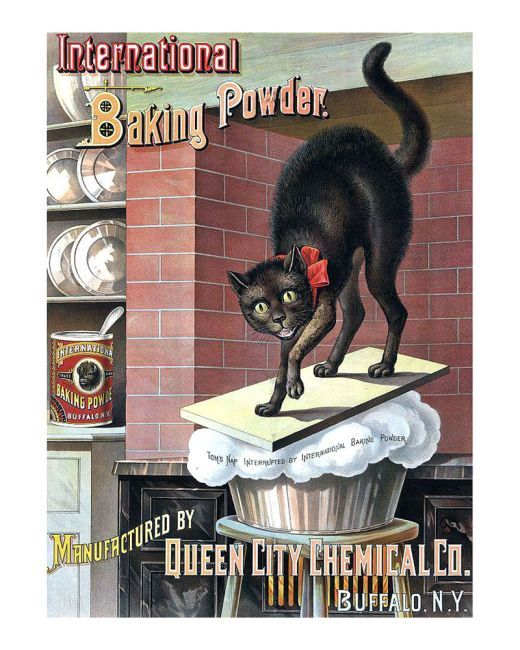 Black Cat Baking Powder - Art Print by Tom Captain