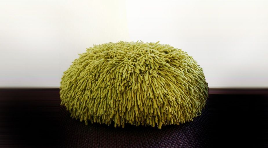 rasta pouf by paulo haubert | for the home | pinterest, Möbel