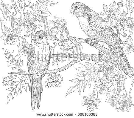 Parrots Sit On A Branch In The Jungle Adult Coloring Book Page Doodle Tropical