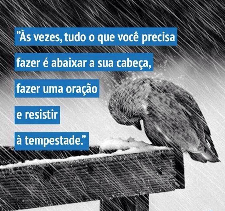 Tempestade Mensagens Frases Motivadoras Frases Tristes