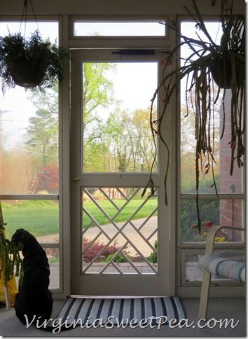 Handcrafted Chippendale Door Doors and House