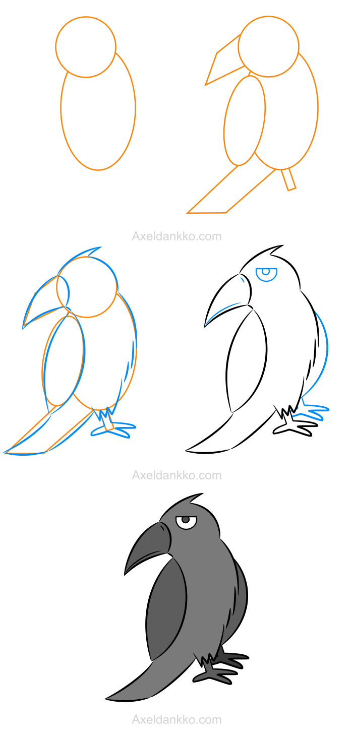 How To Draw A Crow Comment Dessiner Un Corbeau Crows Drawing
