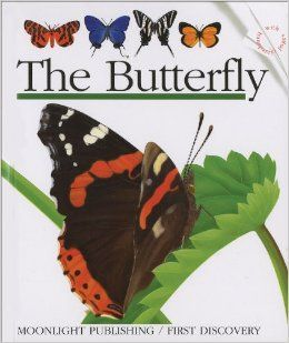 Robot Check Butterfly Books Butterfly Life Of A Butterfly