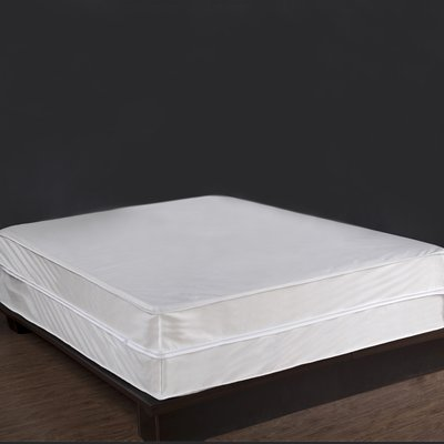 Alwyn Home Laguna Bed Bug And Dust Mite Control Hypoallergenic Waterproof Box Spring Cover Dust Mites Box Spring Cover Bed Bugs