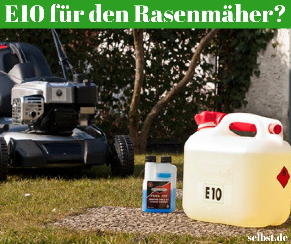 Welches Benzin Fur Rasenmaher Rasen Moos Im Rasen Und Rasenpflege