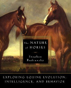 Amazon.com: The Nature of Horses by Stephen Budiansky - explores equine evolution, intelligence and behavior. One of my favorite books about horses! Not about riding, traininf or horse keeping, but all about the horse itself. Found it at my library and then bought it at Barnes and Noble.