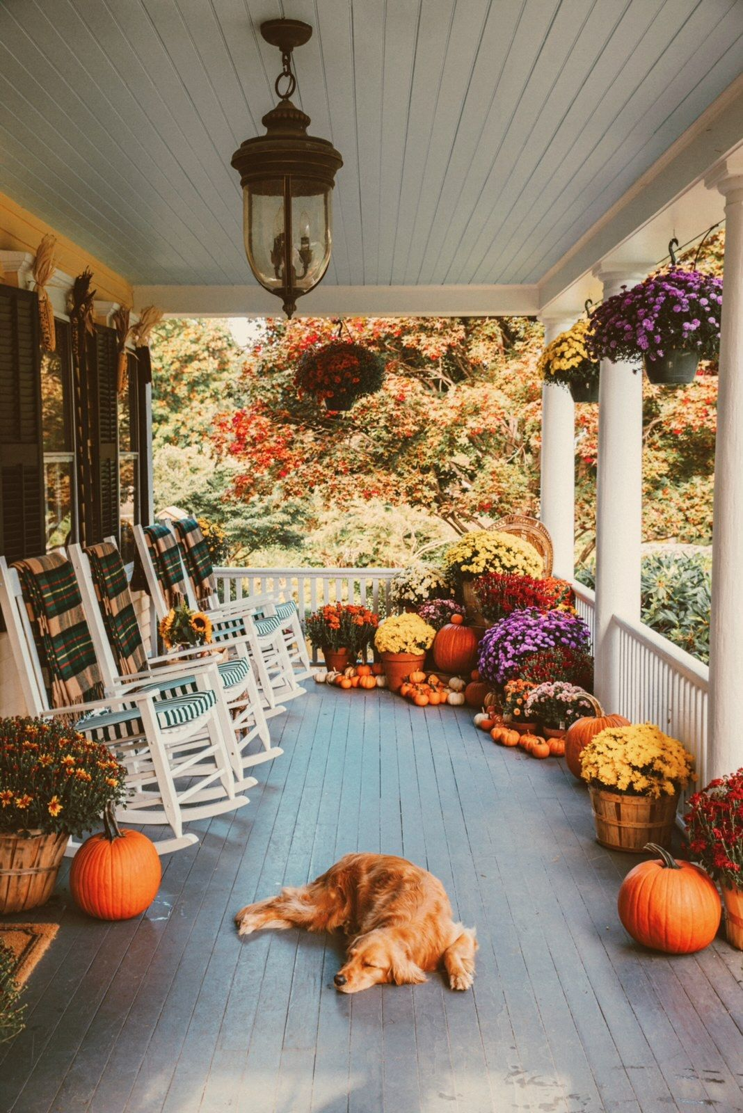 Fall Porch Decorating With Sunbrella Classy Girls Wear Pearls In 2020 Fall Decorations Porch Fall Porch Porch Decorating