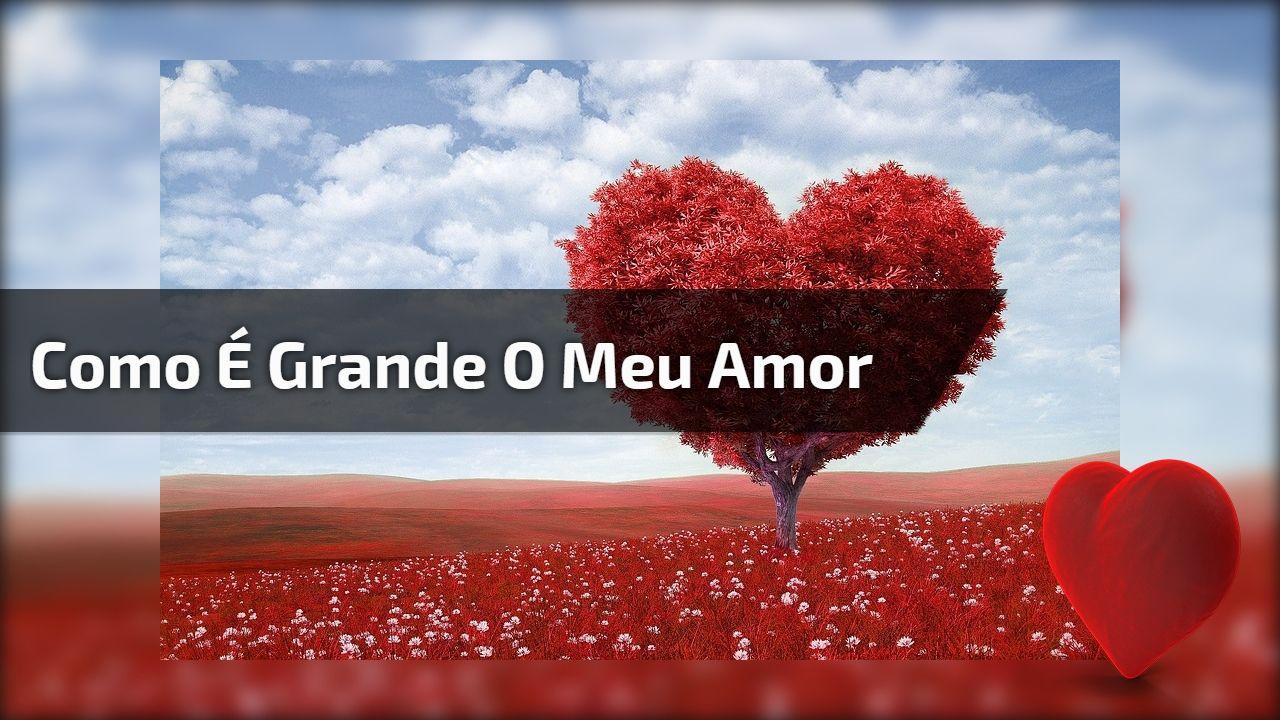 Mensagem Linda De Amor Como E Grande O Meu Amor Por Voce