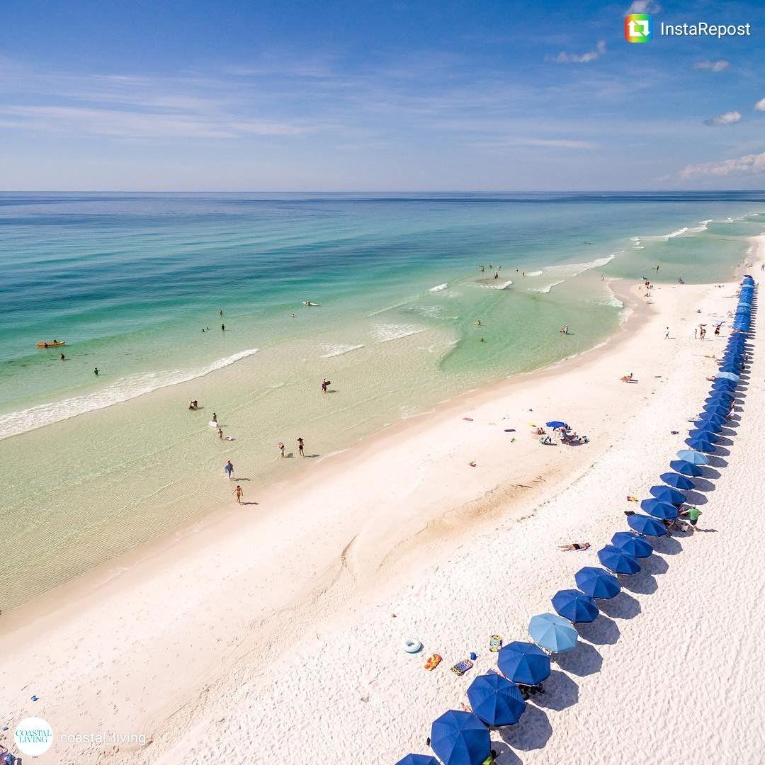 Coastal Living On Instagram Watercolor Fl Beautiful Beach