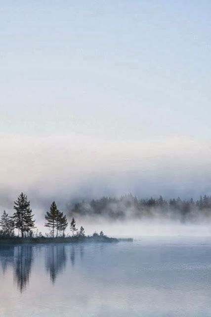 Minimalistic bokeh nature photography - 5 beautiful examples