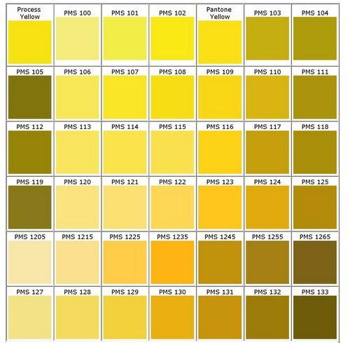 Pantone Yellows Color ChartPantone ColoursYellow