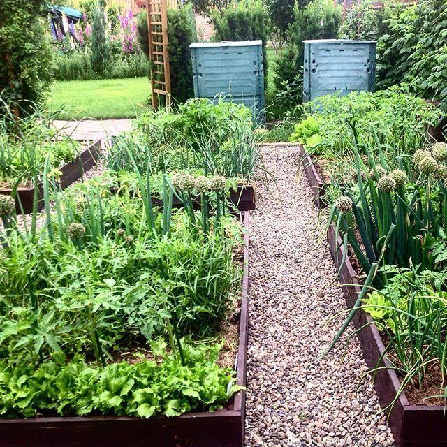 Rooftop Vegetable Garden Ideas: I Just Love This Veg Garden... Dreaming