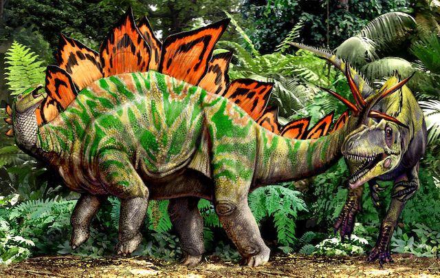 Stegosaurus vs Allosaurus