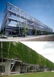 Climbing plants in facade MFO Park in Oerlikon