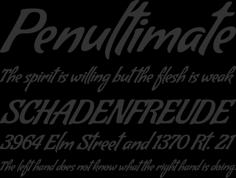 Condiment Font Phrases Invitation fonts, Fonts, Font