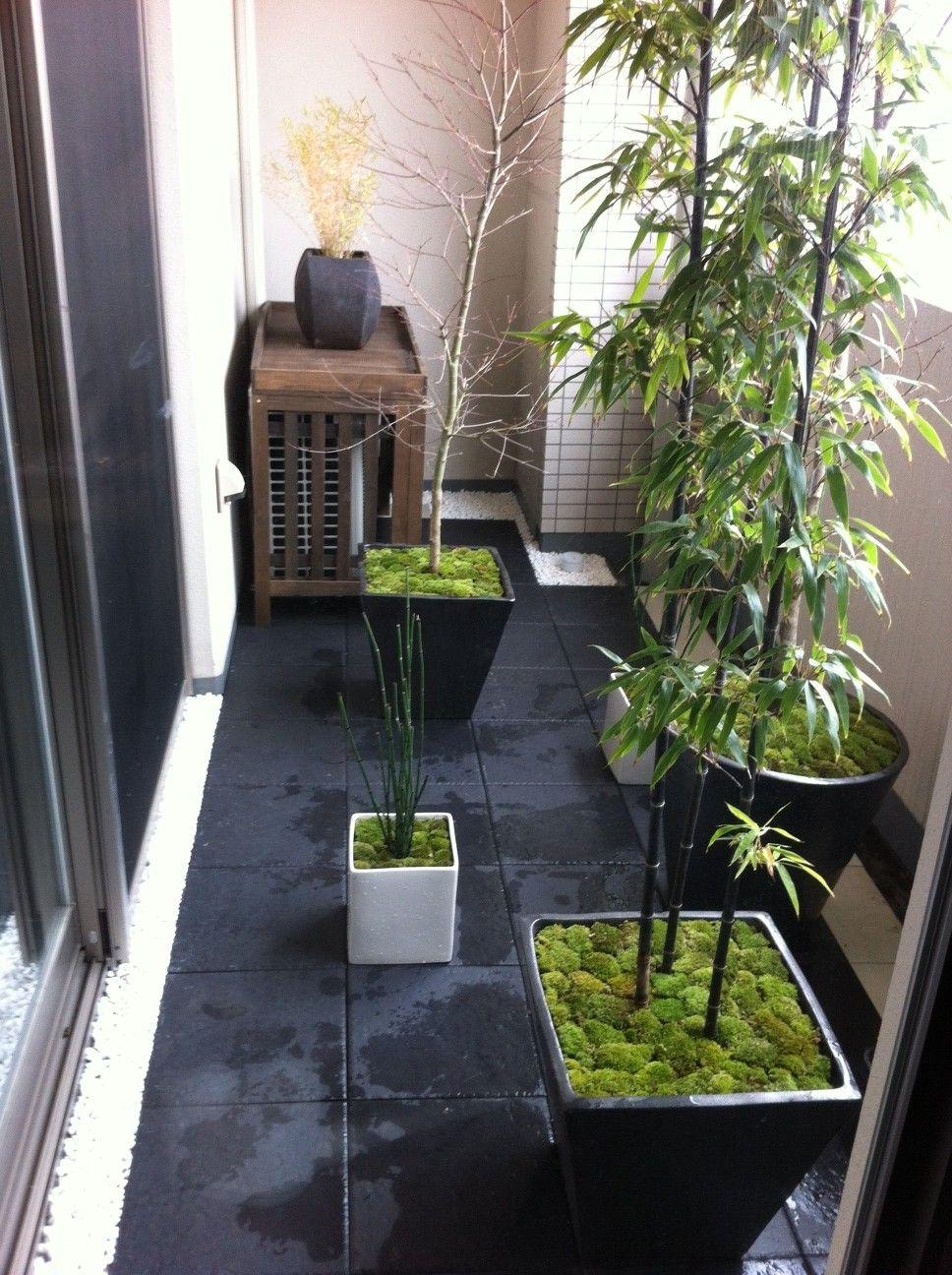 japanese spot garden in apartment balcony