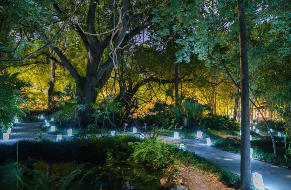 Find Kanapaha Botanical Gardens Wedding Venues One Of Best Valdosta Ga