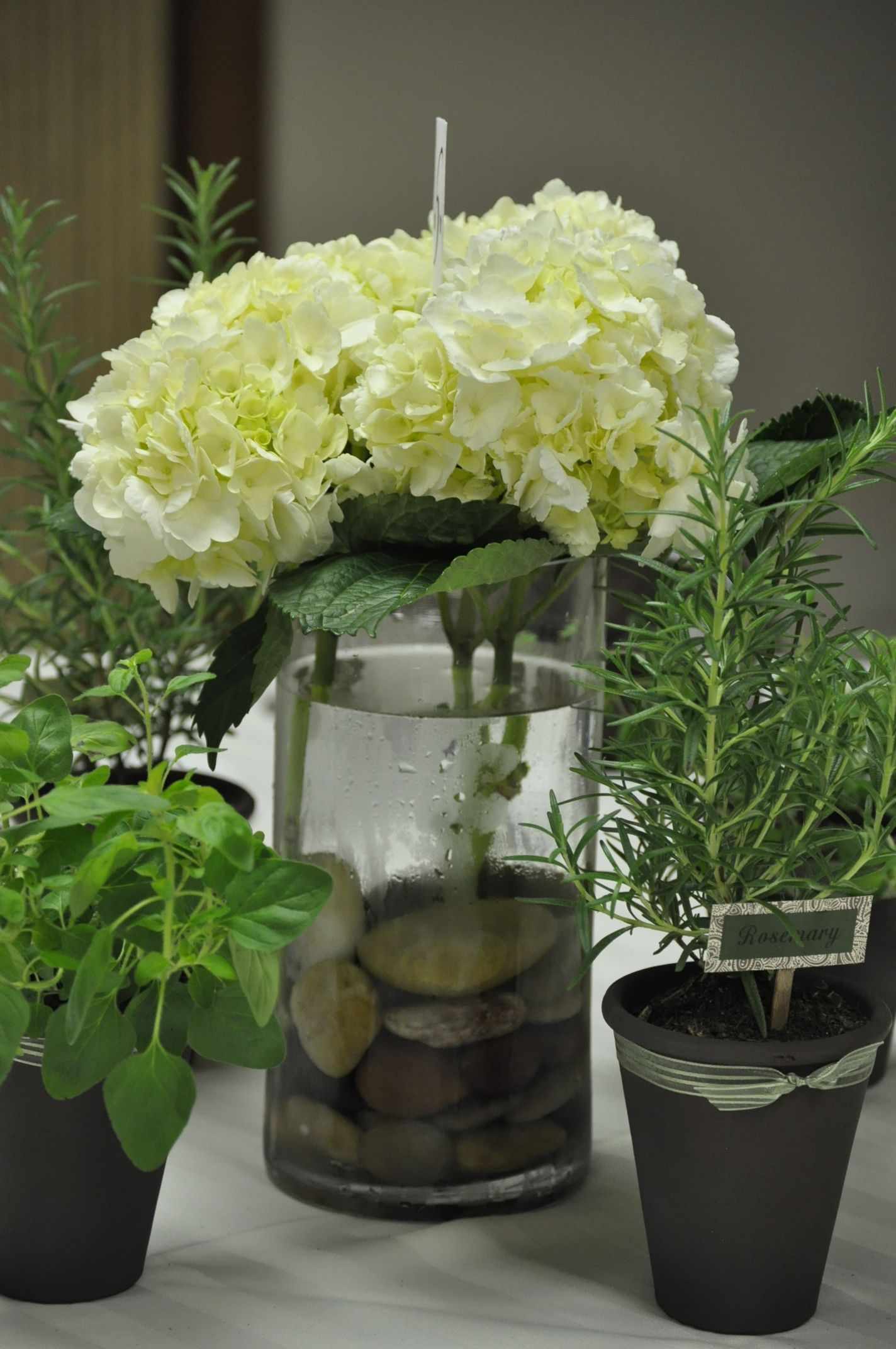 Plant, Hydrangea And River Rock Centerpieces Wwweverafterfloralcom